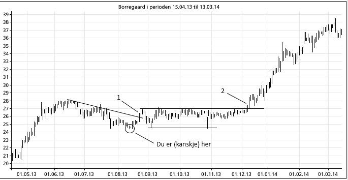 Borregard 2